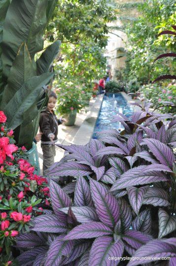 US Botanic Gardens