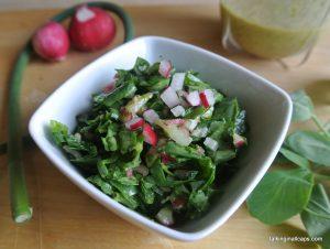 Garden Salad with Lemon Herb Dressing