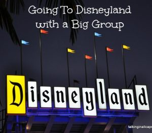 Disneyland with a big group
