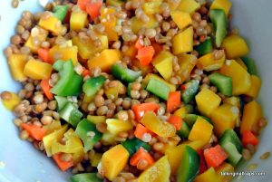 Asian Lentil and Mango Salad 3
